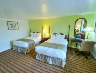 Traditional Guest Rooms, Inn at Reading Hotel & Conference Center